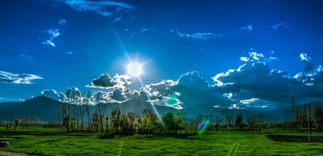 Pengertian dan Definisi Lingkungan Hidup