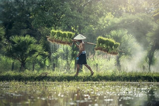 Gaya Hidup Ramah Lingkungan atau Green Lifestyle