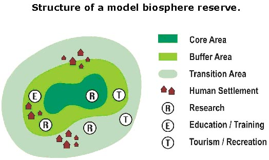 struktur cagar biosfer