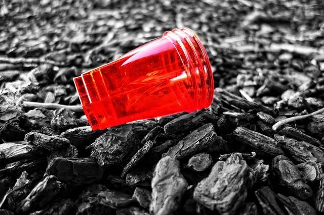 Parlemen Uni Eropa Mengesahkan Pelarangan 10 jenis Plastik Sekali Pakai 2