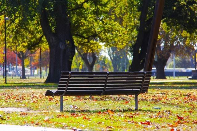 Fungsi Dan Manfaat Taman Kota Penting Bagi Warganya 2