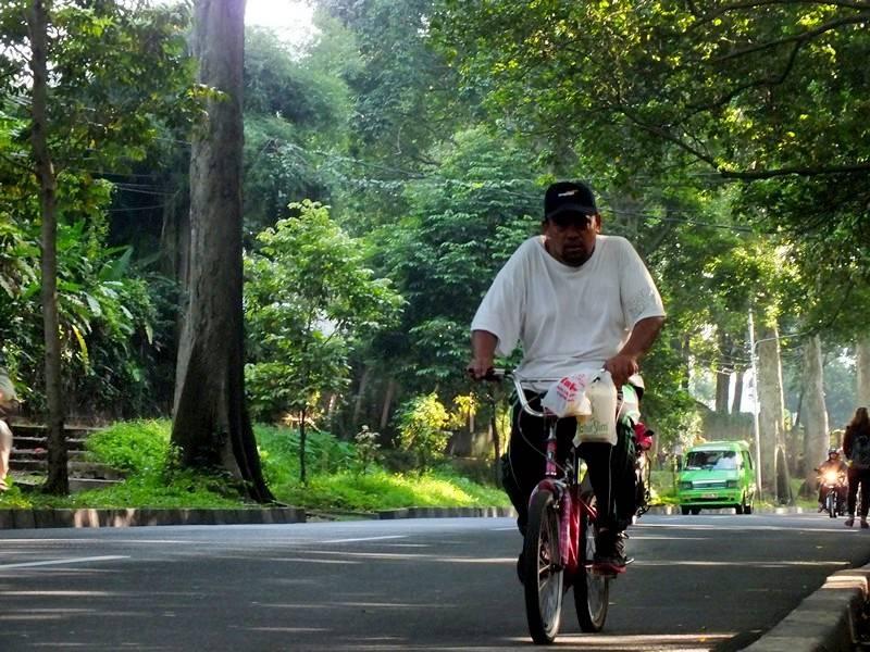 Jalur Khusus Sepeda Tidak Berguna Tanpa Budaya Bersepeda A