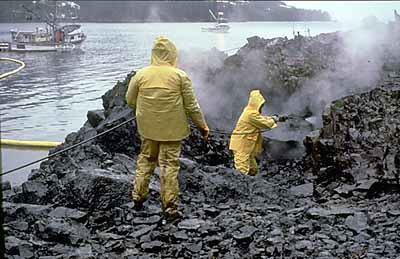 Proses pembersihan pantai yang tercemar minyak mentah exxon valdez