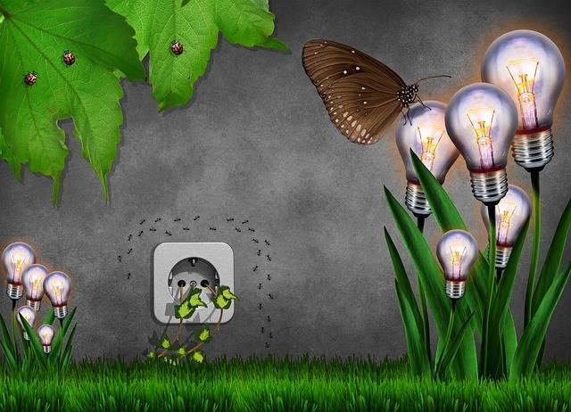 Contoh Sikap Ramah Lingkungan Dalam Kehidupan Sejari Hari