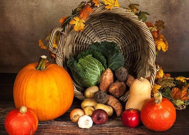 Makanan Terbuang dan Sampah Makanan Berbahaya Bagi Lingkungan